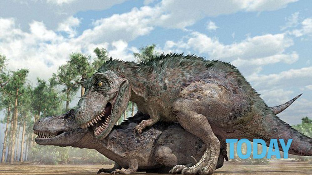 Amore paleontologico, ecco le ipotesi sul sesso tra dinosauri - 1 di 6 - energymarket.lt