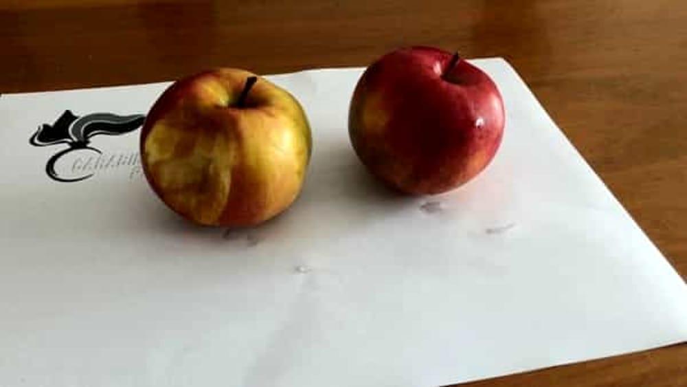 Lascia una mela morsicata sul tavolo ladro seriale in manette - Video sesso sul tavolo ...