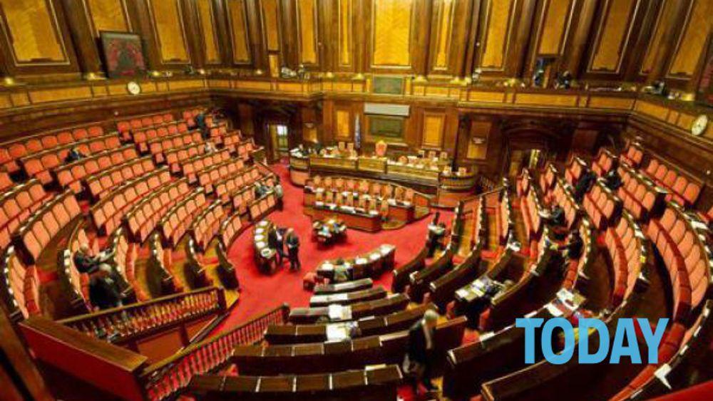 Condono ischia i parlamentari campani di forza italia in for Parlamentari di forza italia